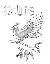 Callie's Bird by Riverfox237 on DeviantArt