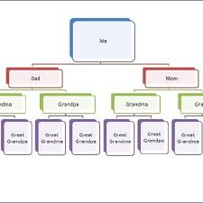 free genogram creator free genogram creator best template solicited letter sample of