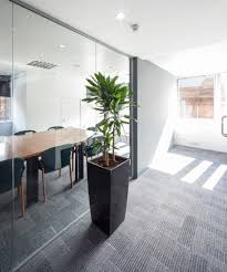 office plants for sale. Perfect Plants Office Plants For Sale Rental And Sale Glasgow West E For Office Plants Sale O