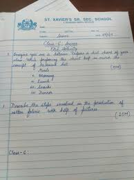 summer essays in english junior students
