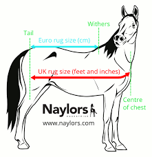 horse rugs measurement guide