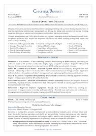 Sample Security Manager Resume System Security Manager Sample Job Description Director Of Resume 3