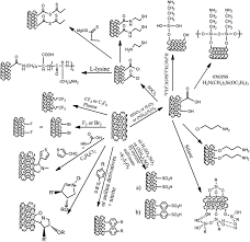 Carbon nanotube catalysts recent advances in synthesis characterization and applications