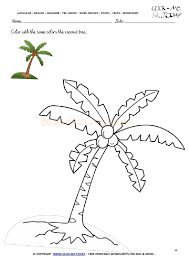 Worksheet 36 - Color with the same colors the coconut tree