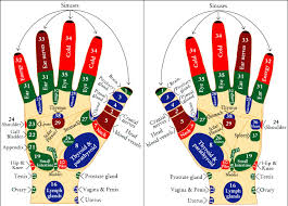 Sujok Therapy Points Chart Freeware Sujok Therapy Points Google Search Hand Reflexology