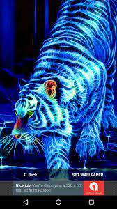 3D Tiger Wallpapers HD 2017 for Android ...