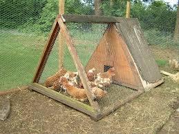 Casette Per Bambini Fai Da Te : Come realizzare un pollaio fai da te casette per giardino ecco