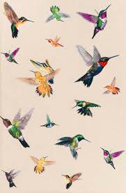 vintage bird wallpaper tumblr. Beautiful Tumblr Bird Image Intended Vintage Bird Wallpaper Tumblr We Heart It