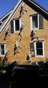 b9a de012c2a409fa0096af45efb halloween skeletons halloween boo