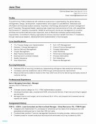Functional Resume Format Example - Resume