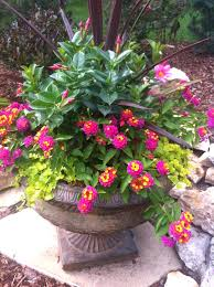 best outdoor flower container ideas images on pot for patio box awesome