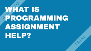 programming assignment help expert developers consultation programming assignment help expert developers consultation