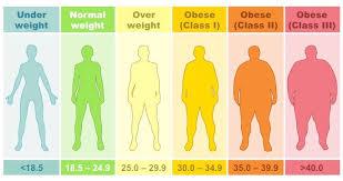 Body Mass Index Bioninja