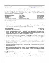 Bank Officer Resume Examples Mortgage Loan Sample For Study Sales