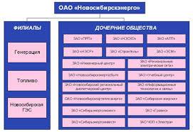Дипломная работа Кадровая политика и управление трудовыми  Дипломная работа Кадровая политика и управление трудовыми ресурсами в ОАО Новосибирскэнерго ru