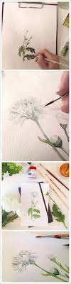 20 delicate colorful watercolor flowers painting tutorials in images watercolor arts delicate watercolor and tutorials