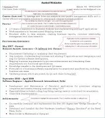 what should a good resume look like really good resume examples tehnolife