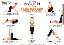 ease your back pain with yoga dr caroleigh elliott chiropractic physician