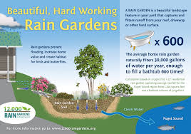 Small Picture Benefits of Rain Gardens 12000 Rain Gardens