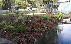 Small Picture Garden Design Planting Perth Softscapes Revive Landscaping