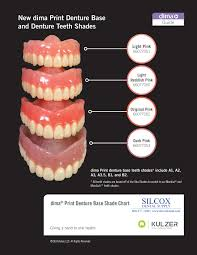 Credible Denture Tooth Shades Blueline Shade Guide Including