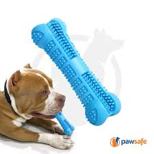 pawsafe dog toothbrush chew toy