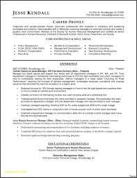 Resume Templates Word Download Best Of Resume Templates Download Resume Templates Word Word Resume