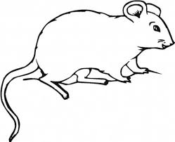 Small Picture Fat Mouse and Rat Coloring Pages Bulk Color