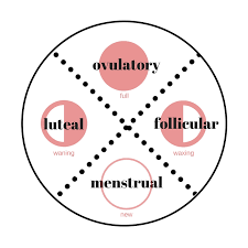 Menstrual Cycle Moon Chart A Few Thoughts About Two Cycles The Menstrual And Lunar