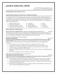 Resume Resources Stunning Resume Resources Classy Examples Of Human Resources Resumes Luxury