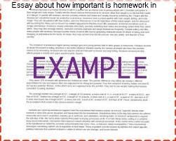 essay about how important is homework in language learning custom  essay about how important is homework in language learning