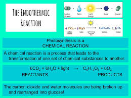 5 the endothermic reaction photosynthesis is a chemical reaction 6co 2 6h 2 o light c 6 h 12 o 6 6o 2 reactants s a chemical reaction is