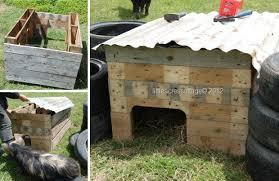 Casette Per Bambini Fai Da Te : Cuccia fai da te idee per costruire una cani e gatti