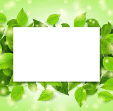Green Leaves Frame Vectors Set 02 Free Download