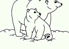 Small Picture Polar Bear Coloring Pages Coloring4Freecom