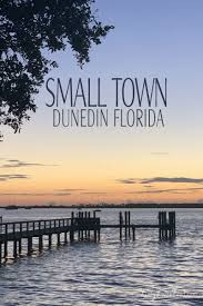 Living in a Small Town {Dunedin Florida} | Lizzy Loves Food