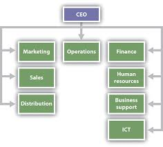 Organizational Design Examples Organizational Design