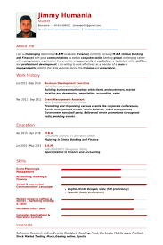 Business Development Executive Resume Samples Visualcv Resume