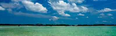 Lea Ann Wade - Pensacola, FL Real Estate Agent | realtor.com®