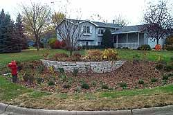 Small Picture Stormwater Management Rain Gardens