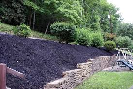 Small Picture Garden Design For Slopes Image Of Hillside Landscape Ideas Rock