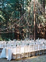 Wedding Tree Lights Beautiful Wedding Tree Backdrop Outdoor Ceremony Designs