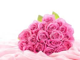 pink roses desktop backgrounds