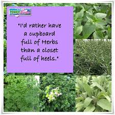 Quotes About Herbs. QuotesGram via Relatably.com