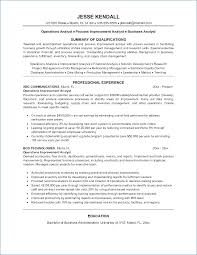 Credit Risk Analyst Resume Ceciliaekici Com