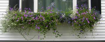 Build Window Box How To Build A Picture Window Sized Window Box On Vinyl Siding