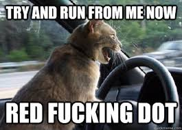 Aggressive Driver Cat memes | quickmeme via Relatably.com