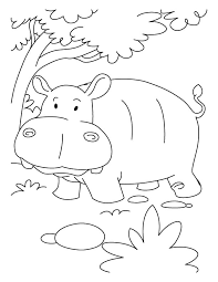 Small Picture Hippopotamus in jumgle coloring pages Download Free Hippopotamus
