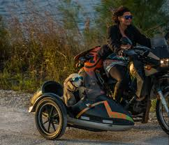 favorite gear for a motorcycle sidecar dog mallory paige
