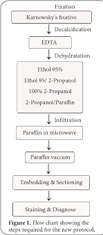 Figure 1 From Microwave Accelerated Processing Of Coral